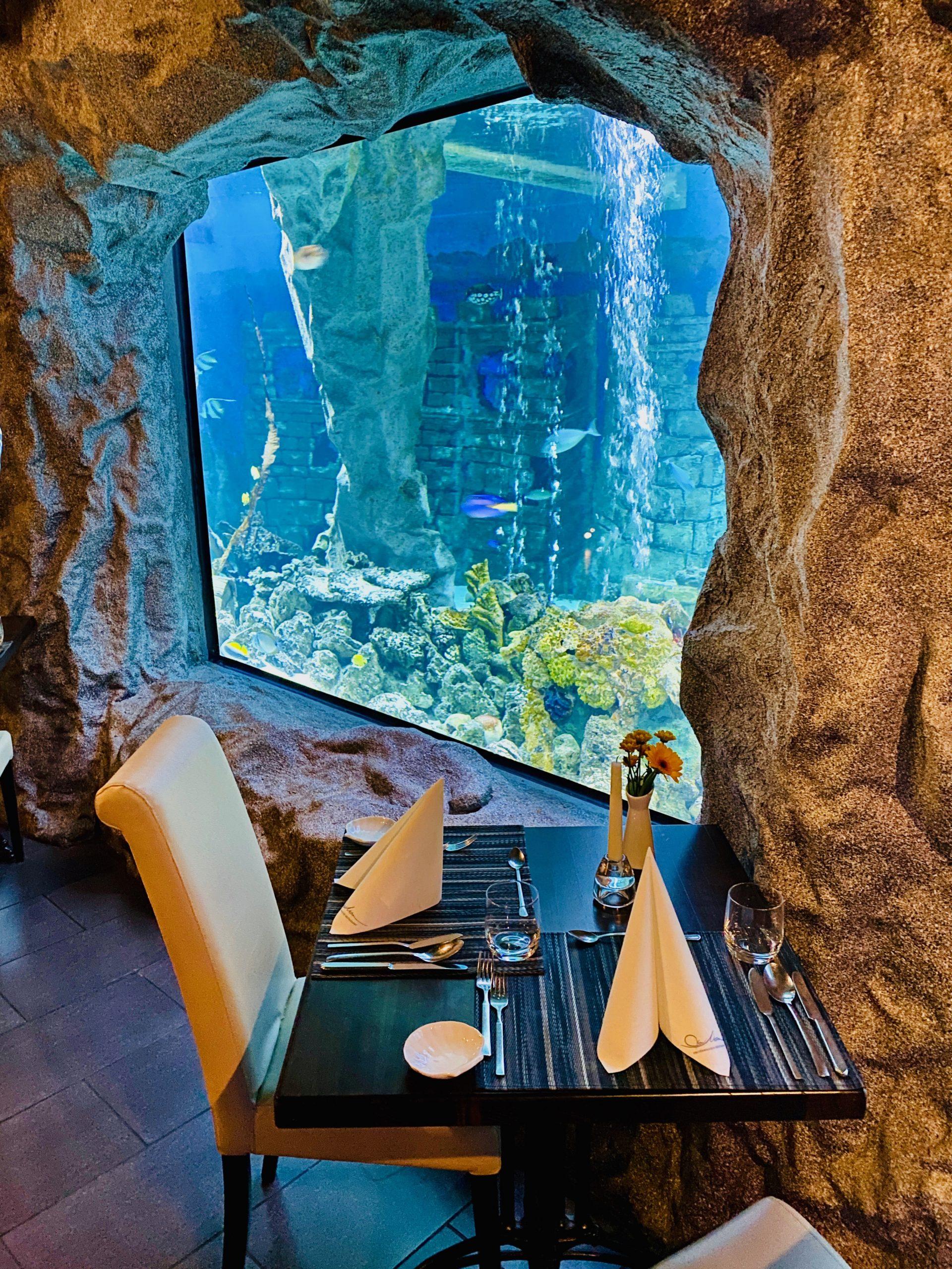 Blick auf unser Aquarium im La Mer